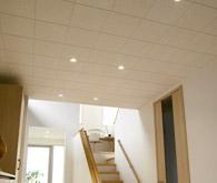 天井のペット対応リフォーム