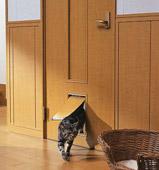 ドアのペット対応リフォーム